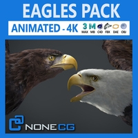 Animated Eagles 3D Model